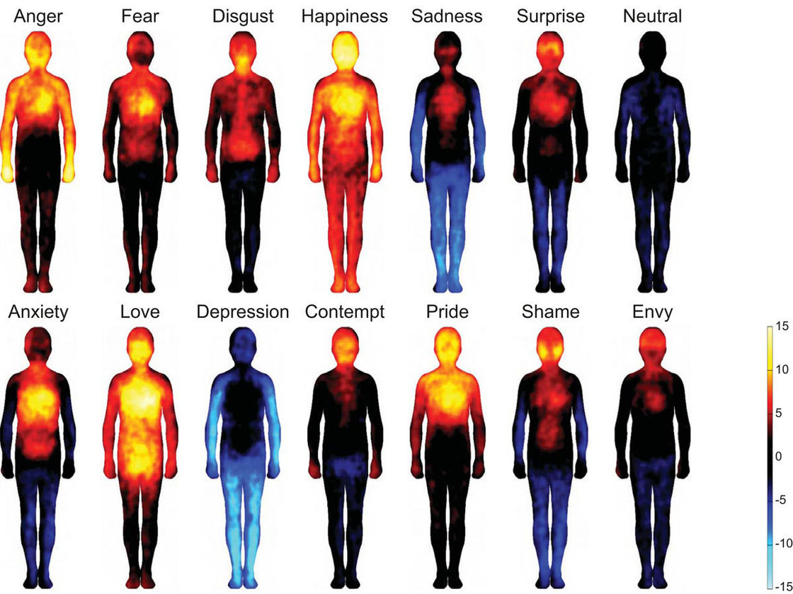 where we feel emotions in our body